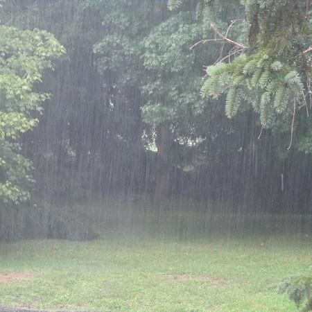 Rain-450