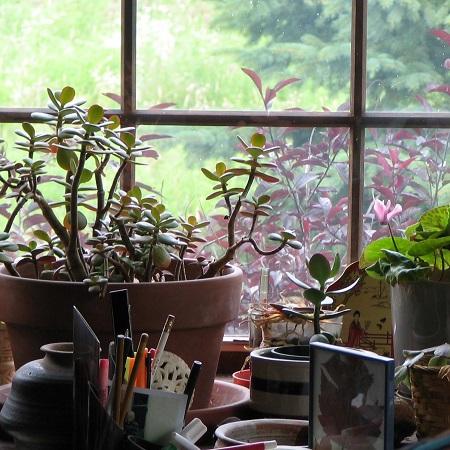 Window2004 - 450